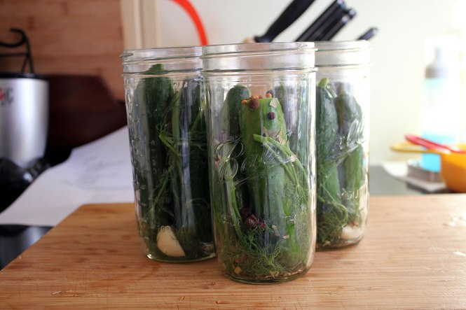Jars:  Now with cucumbers!